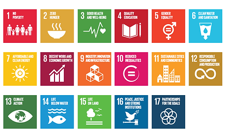 sdgs-sustainable-development-goals.png