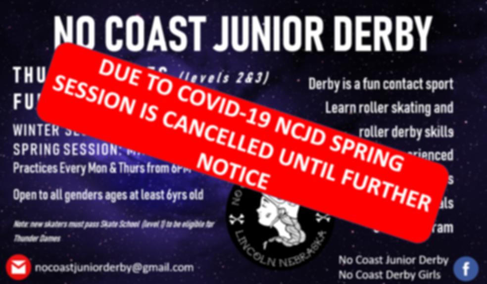 NCJD Flyer_Spring2020_TD&F_color_COVID19