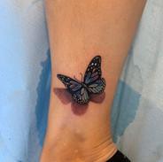 Butterfly tattoo by Tine Tattoo Tom Stud