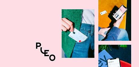Pleo-image.jpg