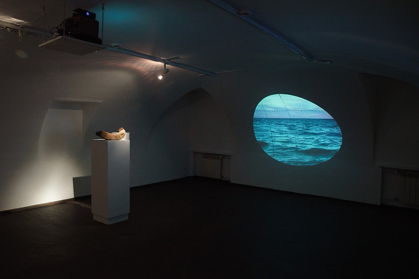 """The Salt"" project. Video installation."