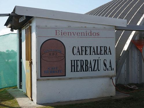 コスタリカ レオンシオ農園 エルバス・マイクロミル/シティロースト 200g