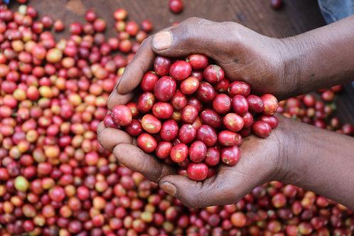ケニア ヤラ農園/フレンチロースト 200g