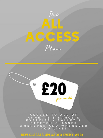 All Access.PNG