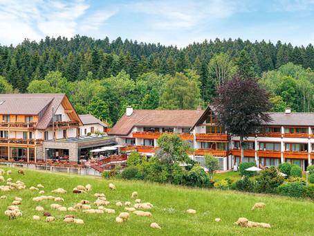 Hotel Grüner Wald, Schwarzwald