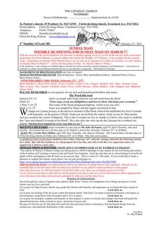 Parish Bulletin: February 20