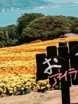 <19년 09월호> 일본어저널 색다른 후쿠오카를 만나자! 하카타만 2