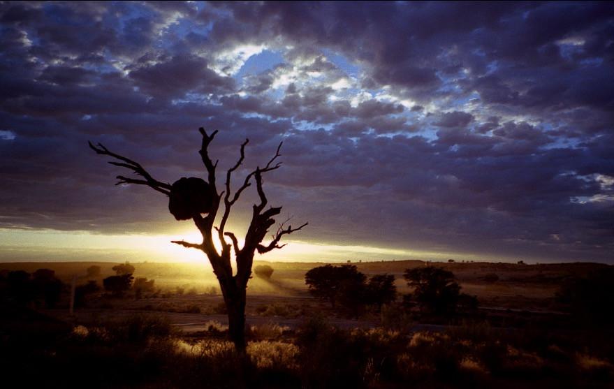sunriseSouthAfrica_edited.jpg