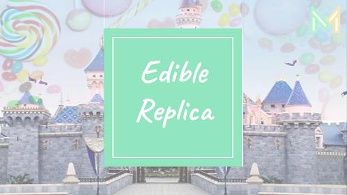 Edible Replica (5th-8th)