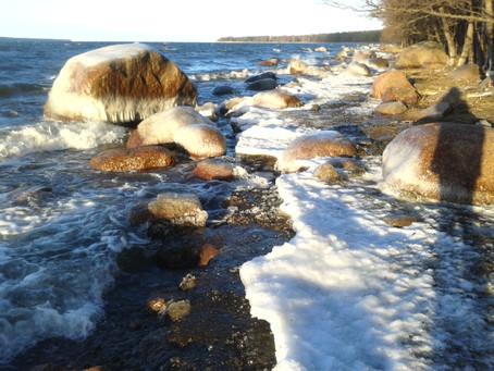 Финский залив, пос. Манола. 10 дек. 2016