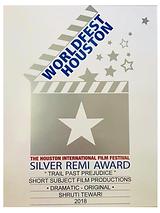 Silver Remi Award.PNG