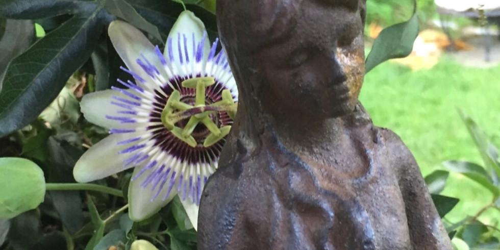 Immersive Collective Flower Essencing Workshop