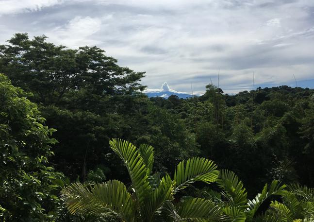 Selina Hostel in Costa Rica