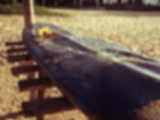 P1050001_Fotor.jpg