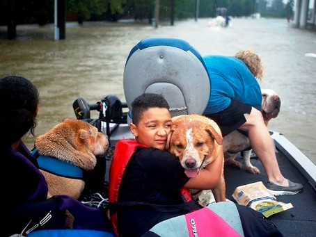What are they going through? The emotional devastation of Harvey.