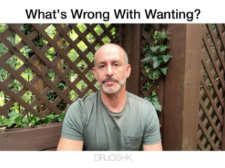 What's Wrong With Wanting?
