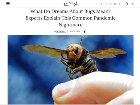 Strange Dreams Since The Pandemic?