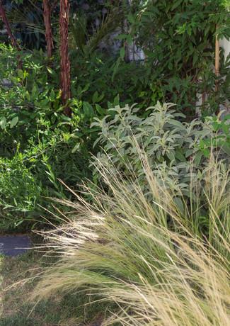 Paysagiste - Jardin - Paris - Sceaux - Sartrouville