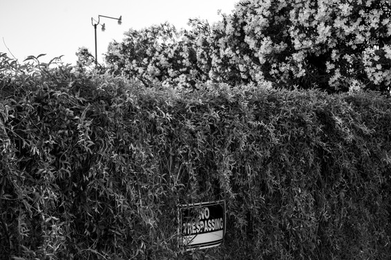 Silent City-17.jpg