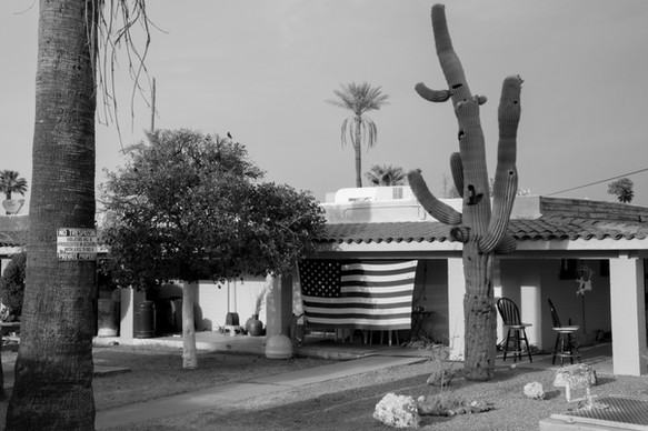 Phoenix-7.jpg
