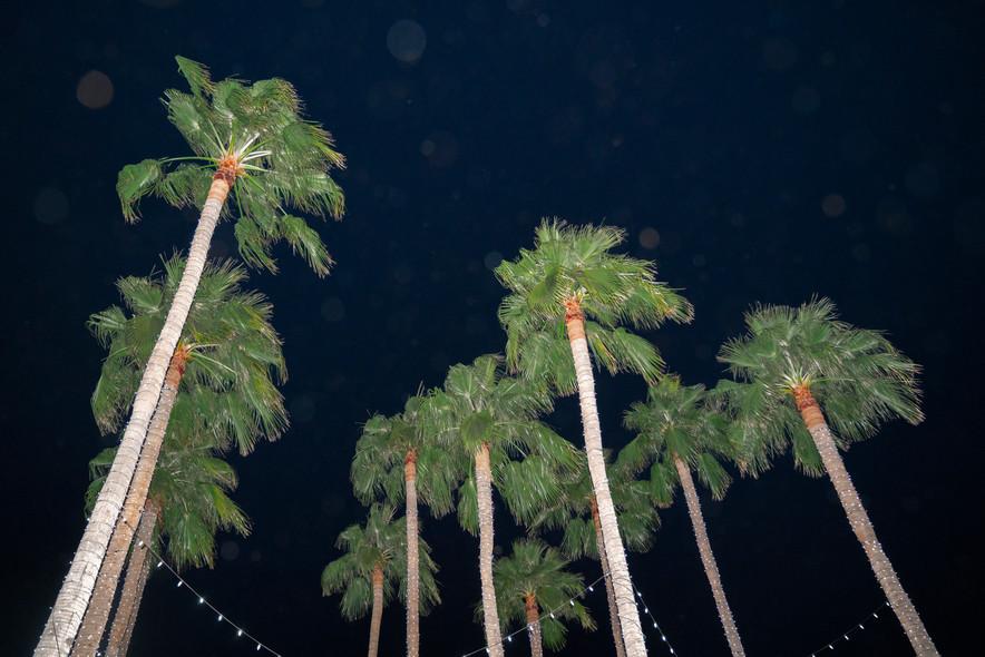 Scottsdale-6.jpg