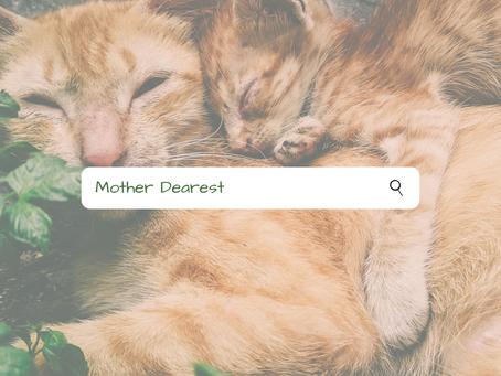 Chapter 2 - Mama Haseeb