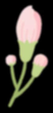 Pink-Flower-Green-Stem.png