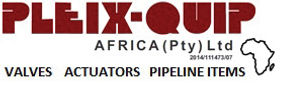 Pleix-Quip Africa.jpg