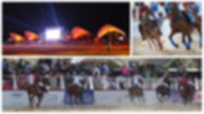 ISEM_2013.jpg