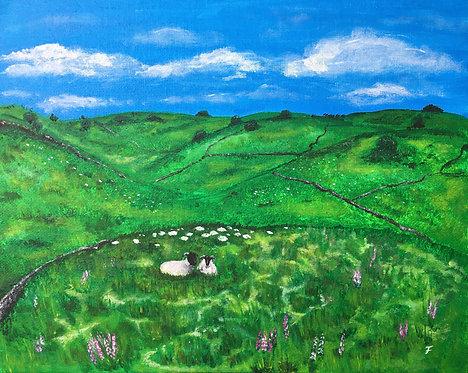 Yorkshire Hills - Felicia Nattress