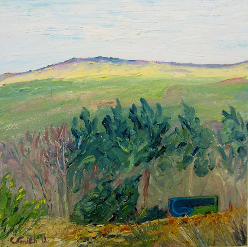 Looking Towards Beamsley Beacon - Caroline Smith