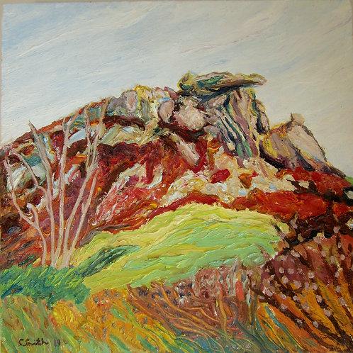 The Crocodile Stone - Caroline Smith