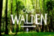 Visual_Walden_190502.jpg