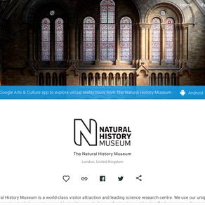 Virtual Trip:Natural History Museum——London