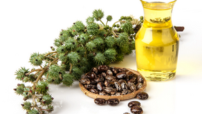 Castor Oil Therapy for Reproductive Health