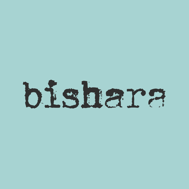 bishara_2web.jpg