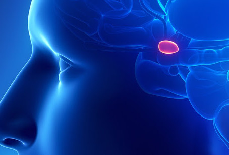 What Crystal Can Decalcify And Activate Your Pineal Gland?