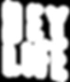 HL logo + ombre.png