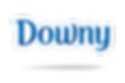 downy_logo__1284483148.png