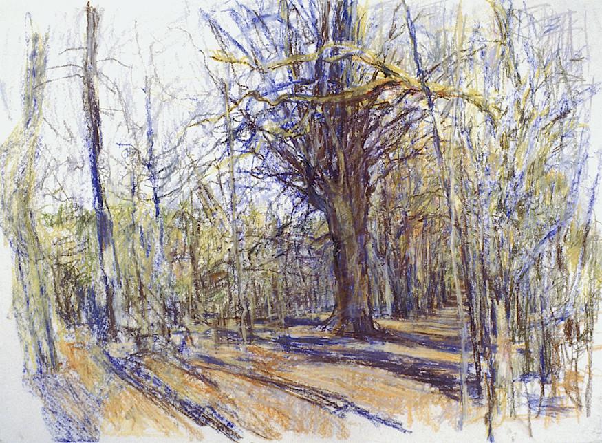 Birdsong Trail (22x30, pastel; 1999)