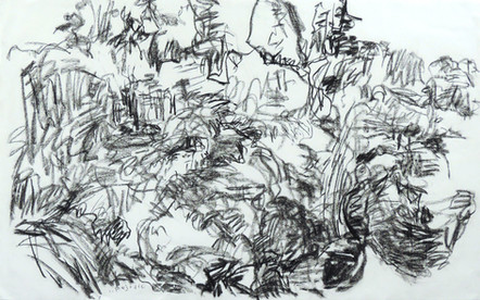 Night Drawing 1 (26x42, charcoal; 2013)