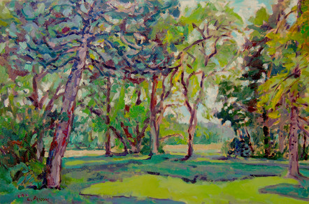 Linwood Trees and Field (24x36, oil; 2016)