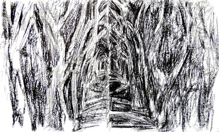 Birdsong Trail Diptych (14x34, charcoal; 2013)