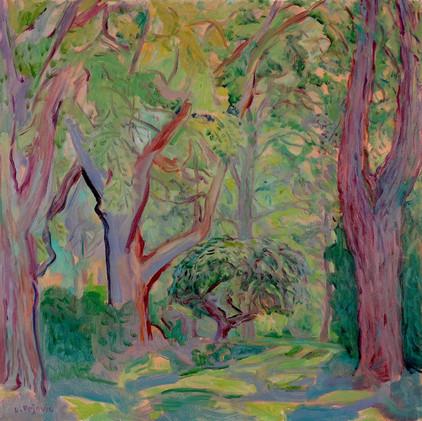 Tall Trees (24x24, oil; 2018)
