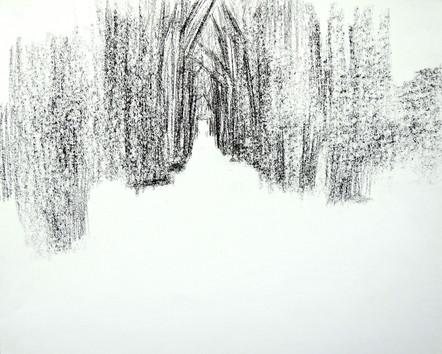 Snowpath (14x17, charcoal; 2013)