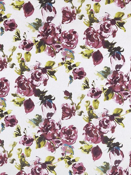 floribunda-wisteria