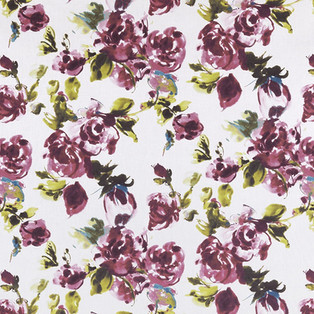 floribunda_wisteria.jpg