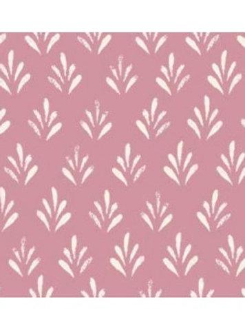 seedling-ground-killary-pink-lemonade