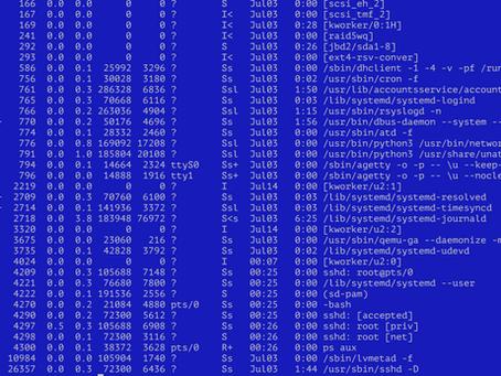 Unser Testserver wurde angegriffen - sichere Passwörter sind wichtig