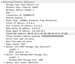 wireshark, IPv4, DHCP